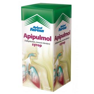 Apipulmol (2 g + 90 mg)/ 100 g, syrop, 120 ml - zdjęcie produktu