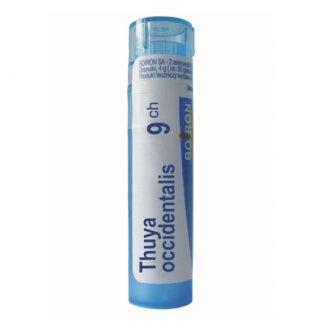 Boiron, Thuya occidentalis 9 CH, granulki, 4 g - zdjęcie produktu