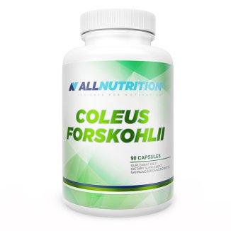 Allnutrition, Coleus Forskohlii, pokrzywa indyjska, 90 kapsułek - zdjęcie produktu