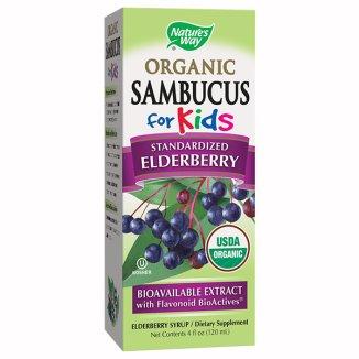 Nature's Way, Sambucus Organic for Kids, syrop, 120 ml - zdjęcie produktu