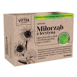 Vitter Herbs Miłorząb z lecytyną, 60 tabletek - zdjęcie produktu